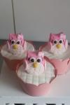 cupcake-decorada-festa-coruja-valinhos-sjcampos
